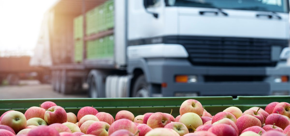 Food warehouse and distribution